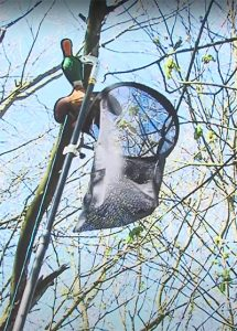 Rope Blade and Bird Net Video Image